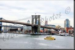Brooklyn Bridge 2013c_pe_pe